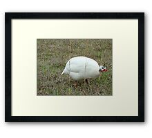 The Hunchback of Chickenville Framed Print