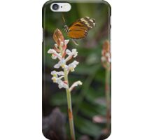 Butterfly Magic 2  iPhone Case/Skin