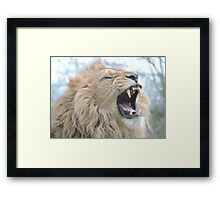 What Big Teeth I Have Framed Print
