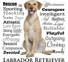 Yellow Lab Traits by DogLove
