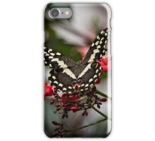 Butterfly Beauty  iPhone Case/Skin