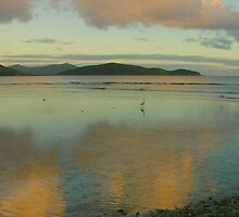 Mary Point Dawn, St. John by Stephen Vecchiotti