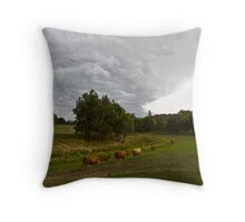 Flee from the coming Danger Throw Pillow