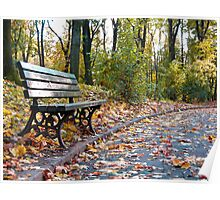 A wooden bench on a park alley Poster