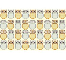 Owls In Pattern Photographic Print