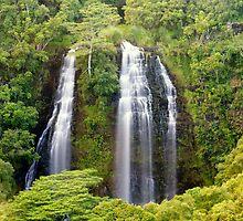 Jungle Falls Falling by Bryan Shane
