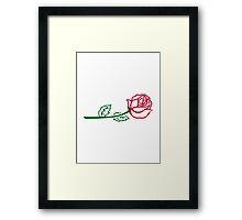 Rose flower Framed Print