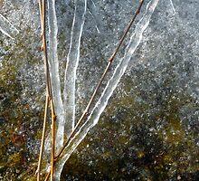 Ice Sculpture Abstract by WildestArt