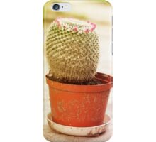 Cactus flowering pink blossoms iPhone Case/Skin