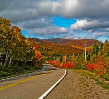 World Famous Cabot Trail by Bradley Nichol