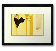 Looking for Mouse Framed Print