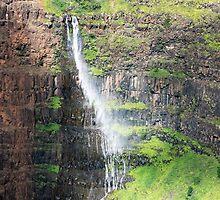 Wild Falls by Bryan Shane