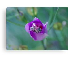 Purple Bee Canvas Print