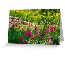 A colorful garden Greeting Card