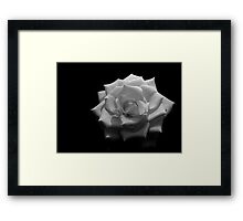 Guess the colour...... Framed Print