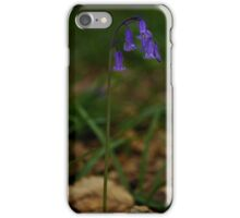 Single Bluebell in Prehen Woods, Derry iPhone Case/Skin