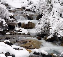 Cold Flow by Walter Quirtmair