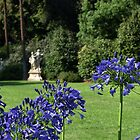 Blue Flowers by cishvilli