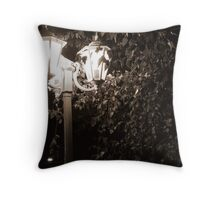 Narnia beckons Throw Pillow