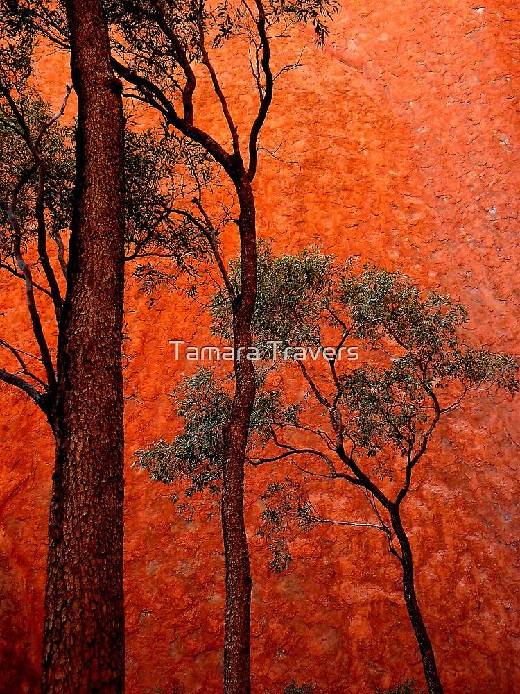 Trees and Uluru  by Tamara Travers
