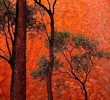 Trees and Uluru  by Tamara Travers
