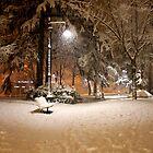 snowfall by annalisa bianchetti