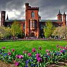 The Smithsonian Castle by Jane Brack