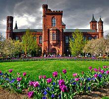 The Smithsonian Castle by Jane Brack