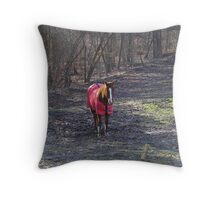 all dressed... Throw Pillow