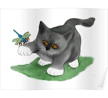 Dragonfly Lands on a Kitten's Paw Poster