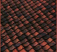 Old town roof by Bluesrose