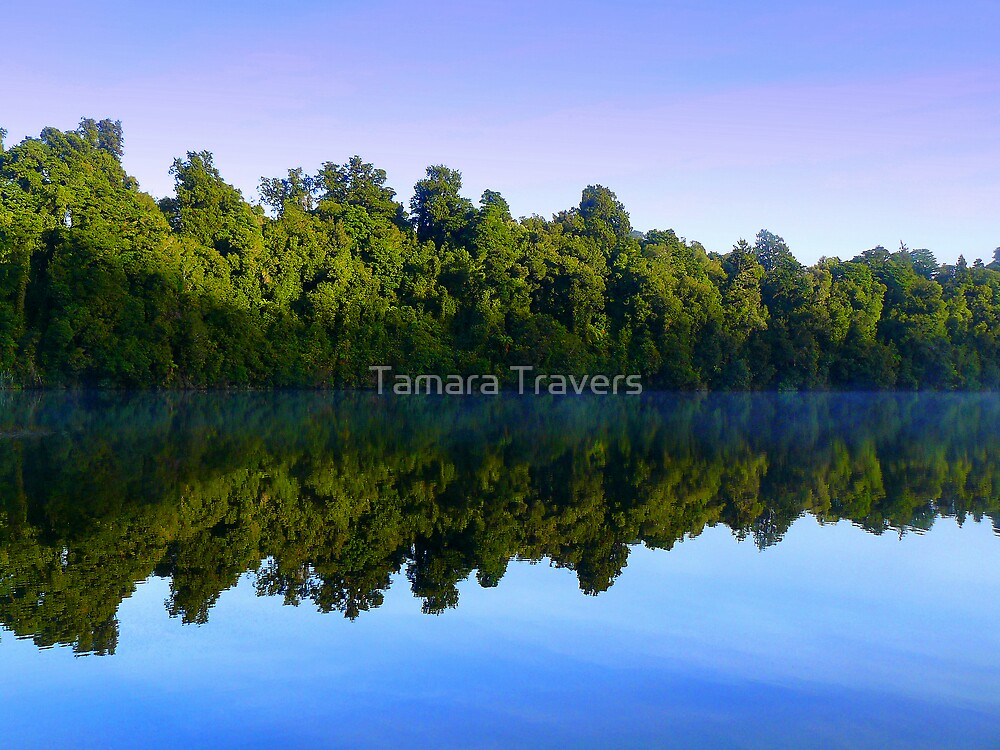 Reflections by Tamara Travers