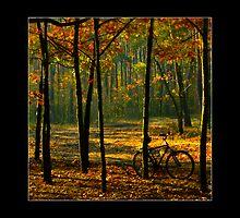 Autumn ride by Mny-Jhee