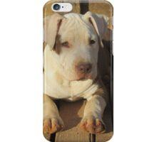 Daisy ~ iPhone Case/Skin