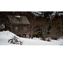 Lonely in the Winter Photographic Print