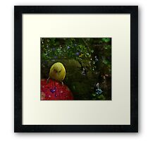 Deep In The Forest Of Dreams Framed Print