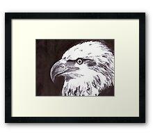 Eagle - USA Framed Print