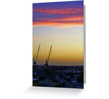 2 crane salute Greeting Card