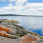 Bay of Fires Afternoon by Harry Oldmeadow
