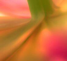 hi color flower by dutchlandscape