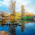 the  Abandon Lake by Agus Achmadyana