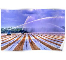 Irrigation Colors Poster