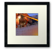 The dOvemaster Strikes Back Framed Print