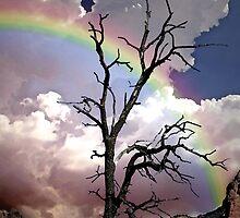 Sedona Rainbow Painted by George Lenz