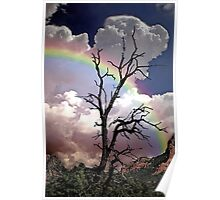 Sedona Rainbow Painted Poster