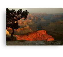 Early Morning, Grand Canyon Canvas Print