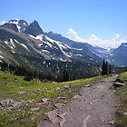 Highline Trail  Glacier National Park by Paul Magnanti