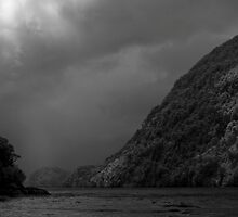 In Doubtful Sound by Ian Robertson