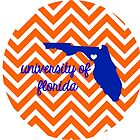 University of Florida Chevron by jaylajones