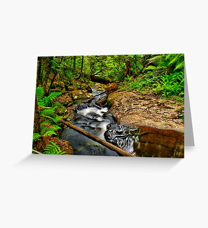 Young's Creek Greeting Card